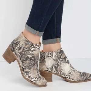 Maurices snakeskin booties